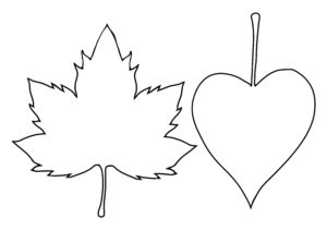 A pair of leaf outlines